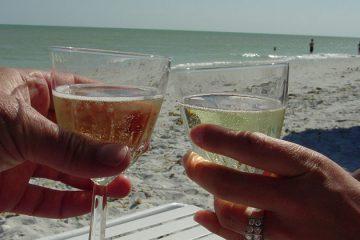 Plonk onthoudt favoriete wijnmoment