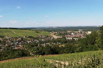 Noord-Franse wijnen populairder