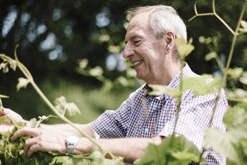 Beschermde status voor Britse wijngaard