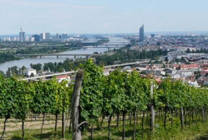 Oostenrijkers hopen op betere oogst