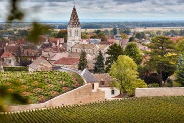 Nederlandse fijnproevers in Bourgogne