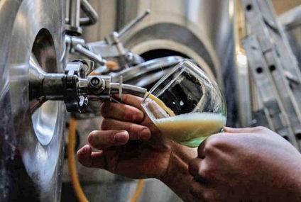 De kracht van craft bier