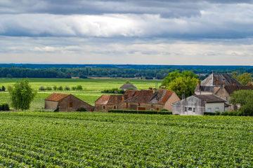 Vlag uit in Bourgogne
