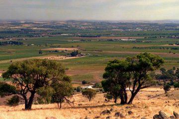 Zuid-Australië pompt geld in wijntoerisme