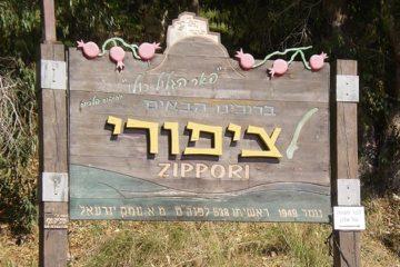 2500 jaar oude wijnpersen gevonden in Israël