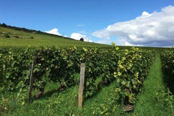 Bourgogne op tournee