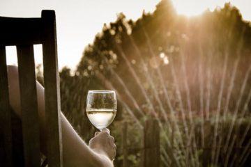 Sarah in de wijn