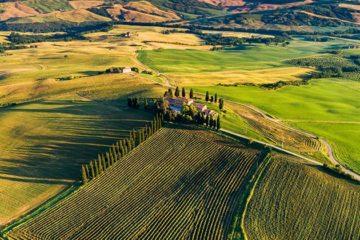 Toscaanse wijnmaker investeert in Master of Wine