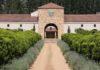 Wijnliefhebber reist toch naar Zuid-Afrika
