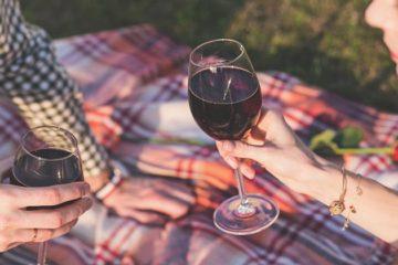 Picknick tussen de wijnstokken